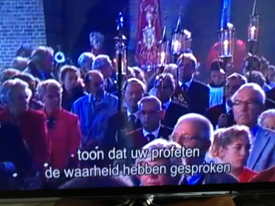 TV-Mis in Laren